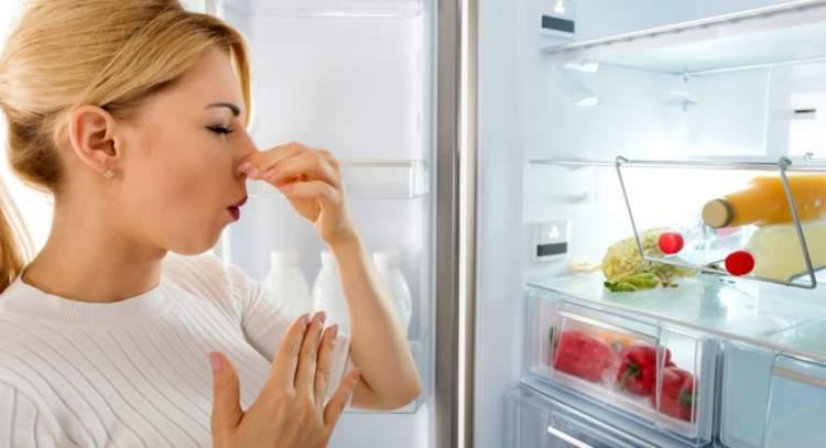 come pulire il frigo e togliere i cattivi odori