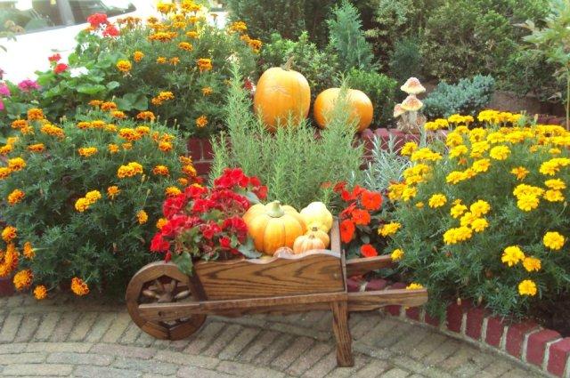 giardino-orto-erbe-aromatiche