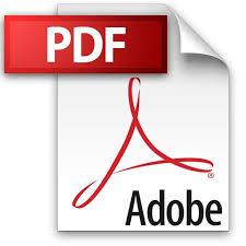 pdf-stampa-google