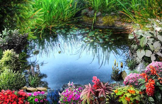 come-fare-laghetto-giardino