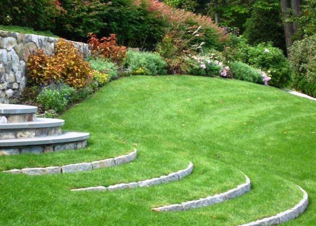 Come seminare il prato - Quando seminare erba giardino ...