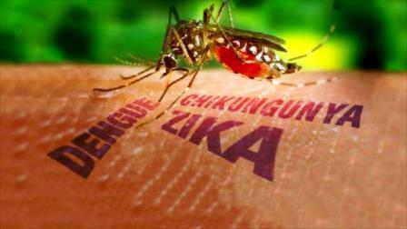 come-proteggersi-virus-zika