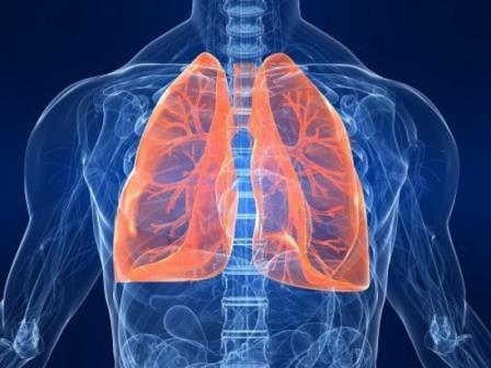 come-curare-bronchite-rimedi-naturali