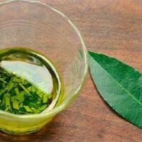 i benefici delle foglie di alloro