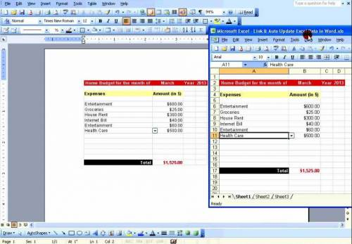 tabella excel in word