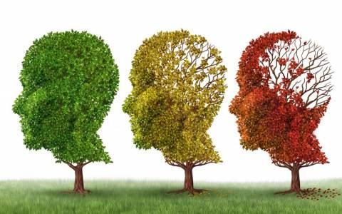 prevenzione morbo di Alzheimer.