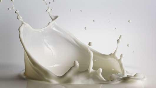 latte di capra bellezza