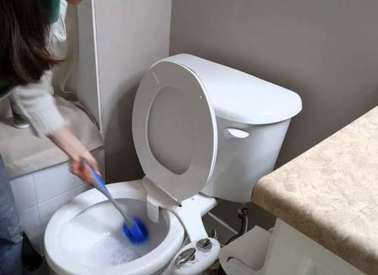 disinfettare il wc
