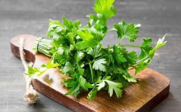 prezzemolo pianta medicinale
