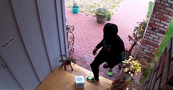 videocamera di sicurezza pacchi