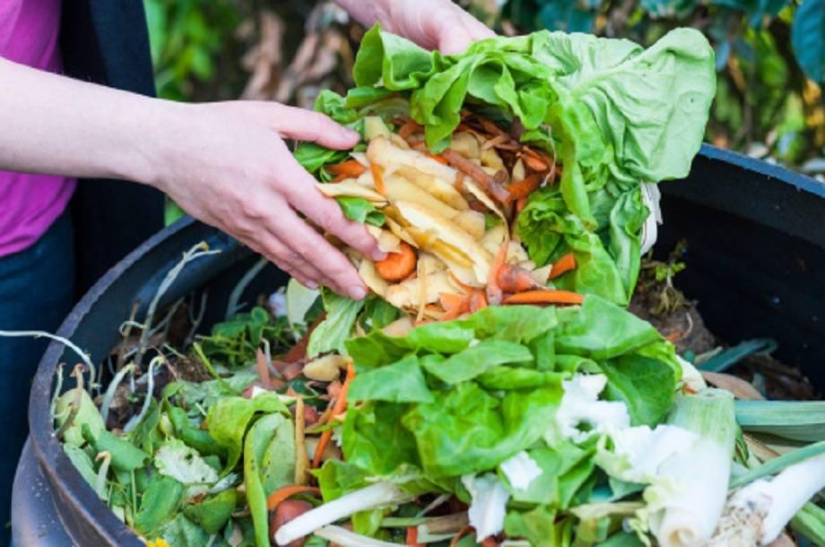 fertilizzante naturale con la compostiera