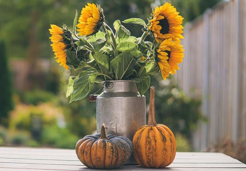 decorazioni floreali per halloween