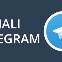 i migliori canali telegram gratis